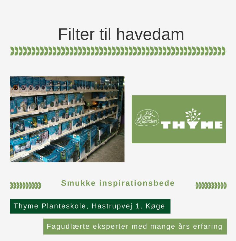 Filter Til Havedam Hos Thymes Planteskole I Køge Handl Lokaltdk